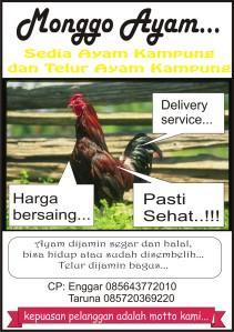 ayam ku, ayam kami, ayam mu